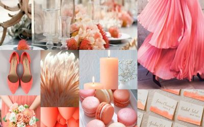 Living Coral – Reconnecting with Nature – Pantone Color 2019