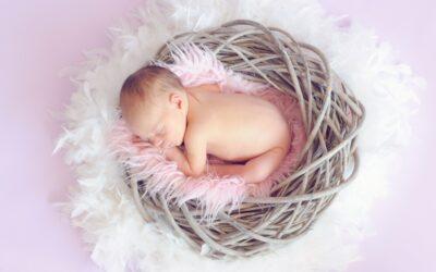 Newborn & Monthly Anniversary Photo Shoot Sessions